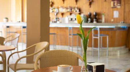 Cafeteria hôtel ele andaratx aguadulce